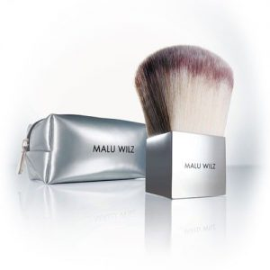 premium face brush